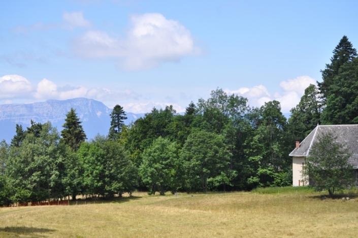 Forêt de Premol